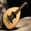 play the lute App by RuviApps