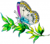+bug+insect+flying+butterfly+on+plant+left+ clipart