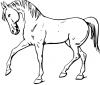 +animal+ungulate+mammal+Equidae+walking+horse+outline+ clipart